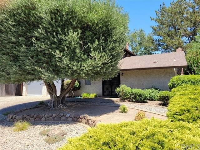 4 Spanish Oak Circle, Chico, CA 95926 (#SN21157771) :: The Laffins Real Estate Team
