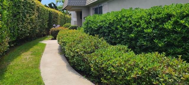 3148 Orleans E, San Diego, CA 92110 (#210020366) :: Latrice Deluna Homes