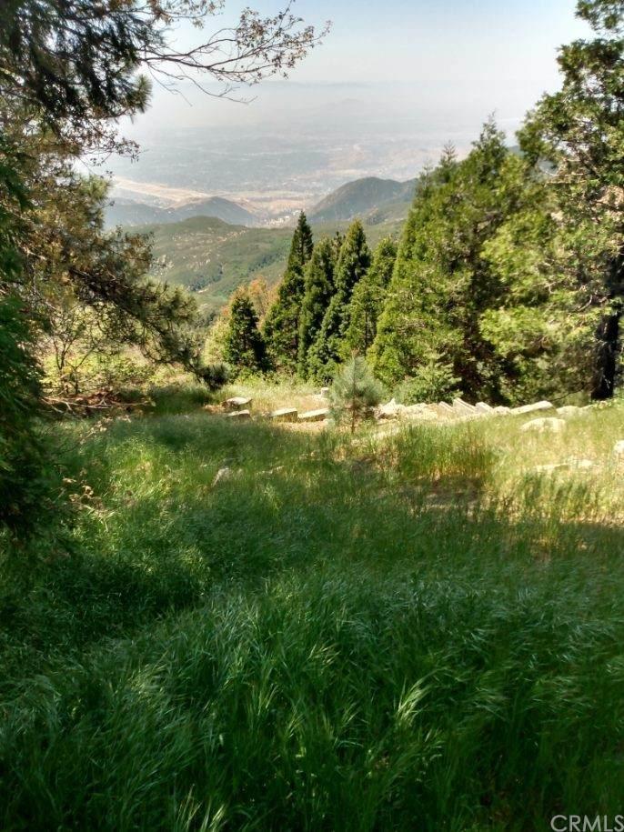 26639 Blackfoot Trail - Photo 1