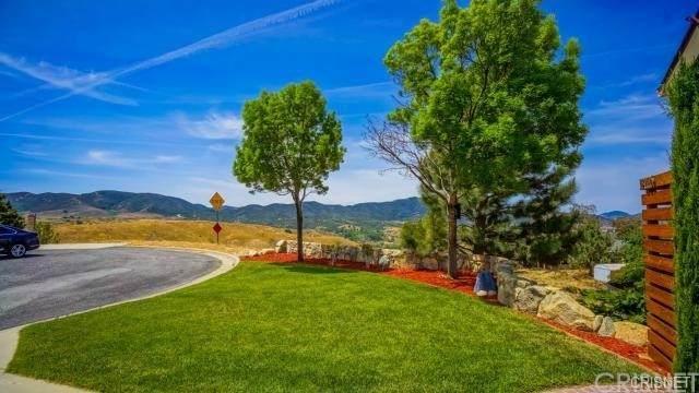 13225 Lonetree Drive, Lake Hughes, CA 93532 (#SR21160030) :: Robyn Icenhower & Associates