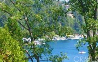 27524 West Shore Road, Lake Arrowhead, CA 92352 (#OC21160919) :: Latrice Deluna Homes