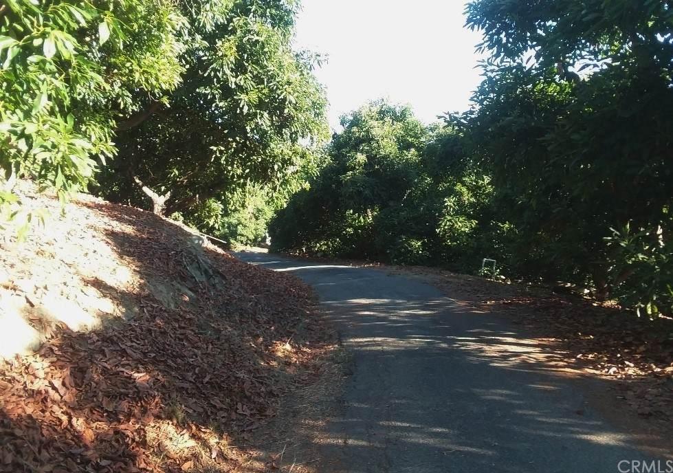 44130 Arpa Road - Photo 1