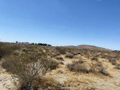 0 El Mirage Road - Photo 1