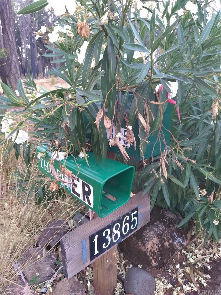 13865 Park Drive - Photo 1