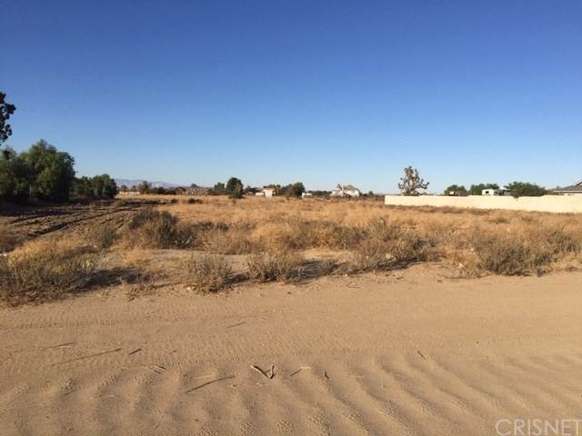 0 Vac Avenue 012 Vic 23 Stw, Palmdale, CA 93551 (#SR21168874) :: Realty ONE Group Empire