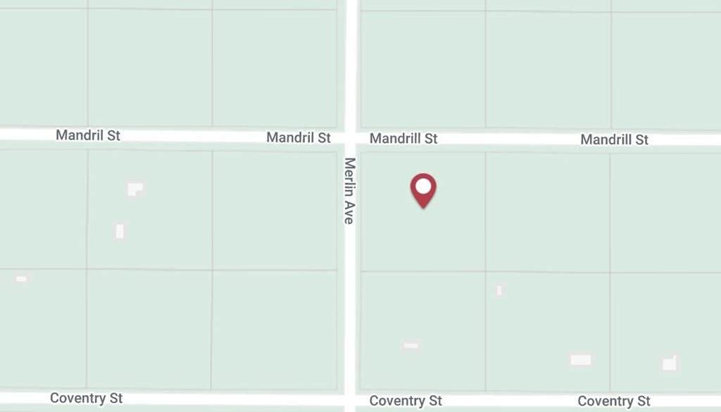 0 Mandrill Street - Photo 1