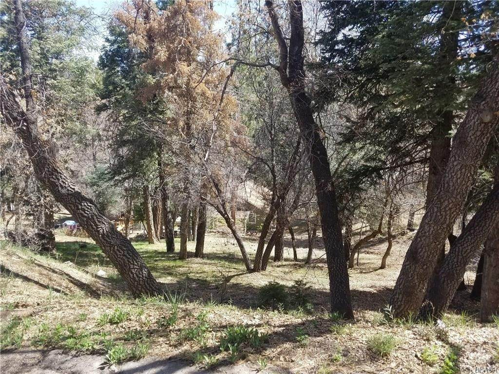 43290 Shasta - Photo 1