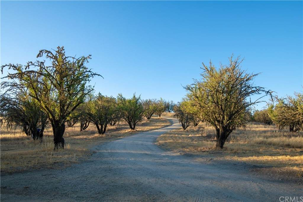 4150 Rancho Road - Photo 1