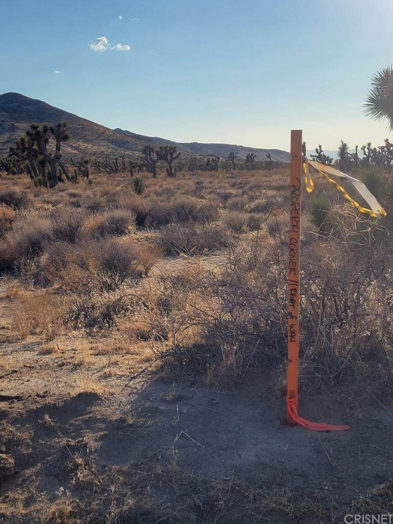 1 Mojave Tropico Rd - Photo 1
