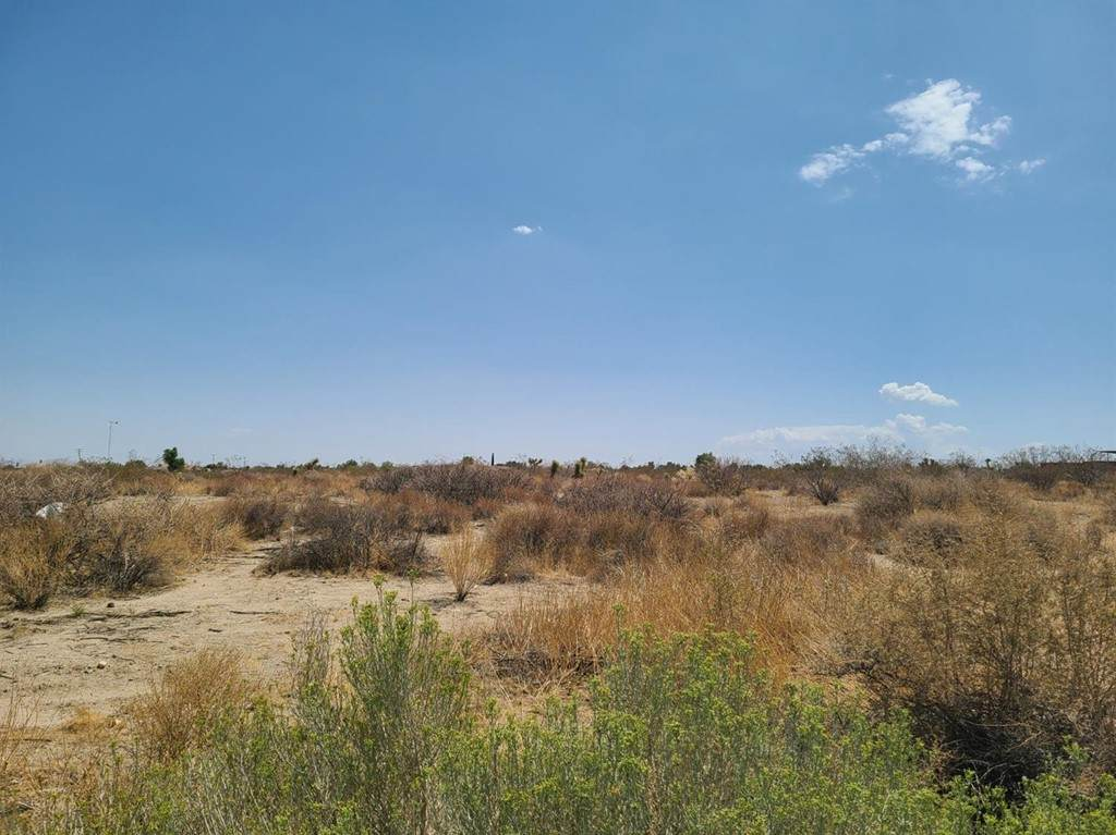 11617 Oasis Road - Photo 1