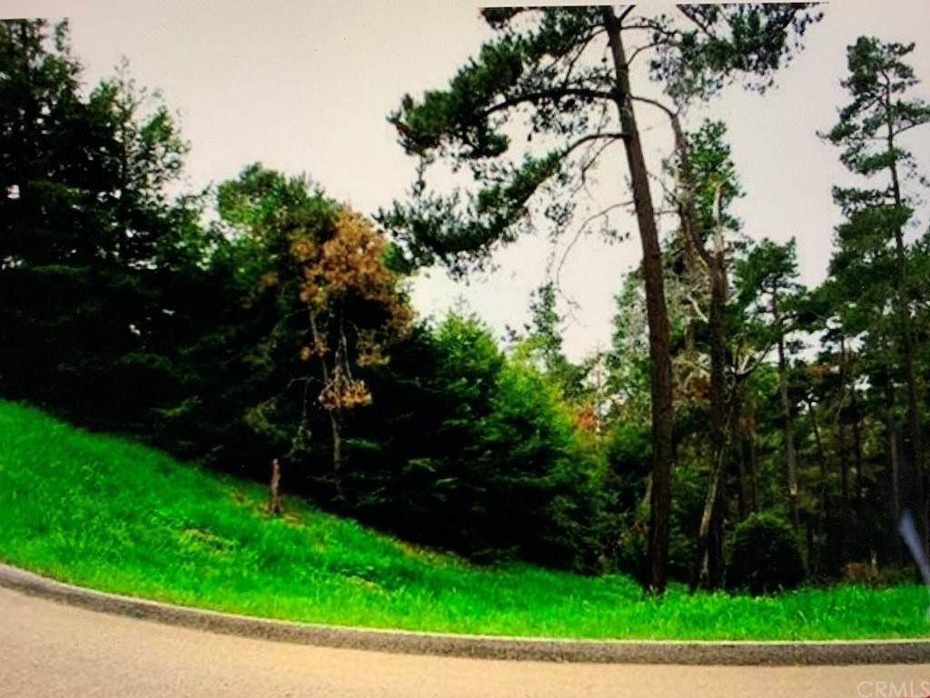 0 Burton Drive - Photo 1