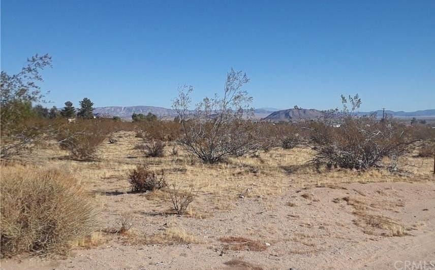 111 Deer Trail - Photo 1