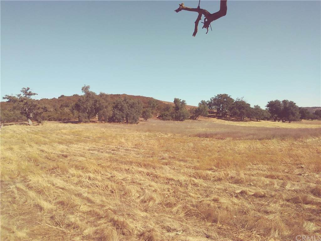 0-LOT 3 Deanna Ranch Road - Photo 1