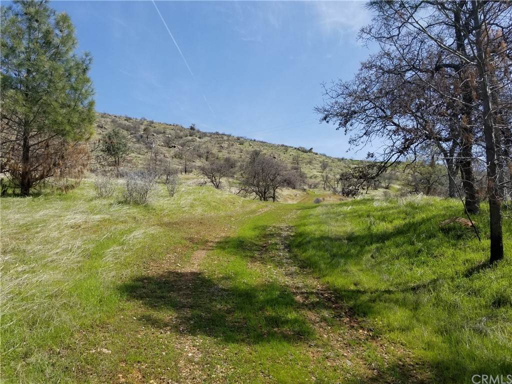 8256 Hunters Valley Road - Photo 1