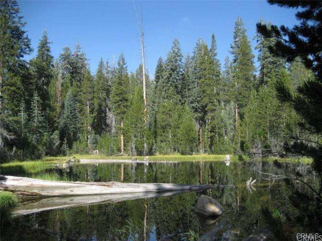 0 39.8 AC Lost Lake - Photo 1