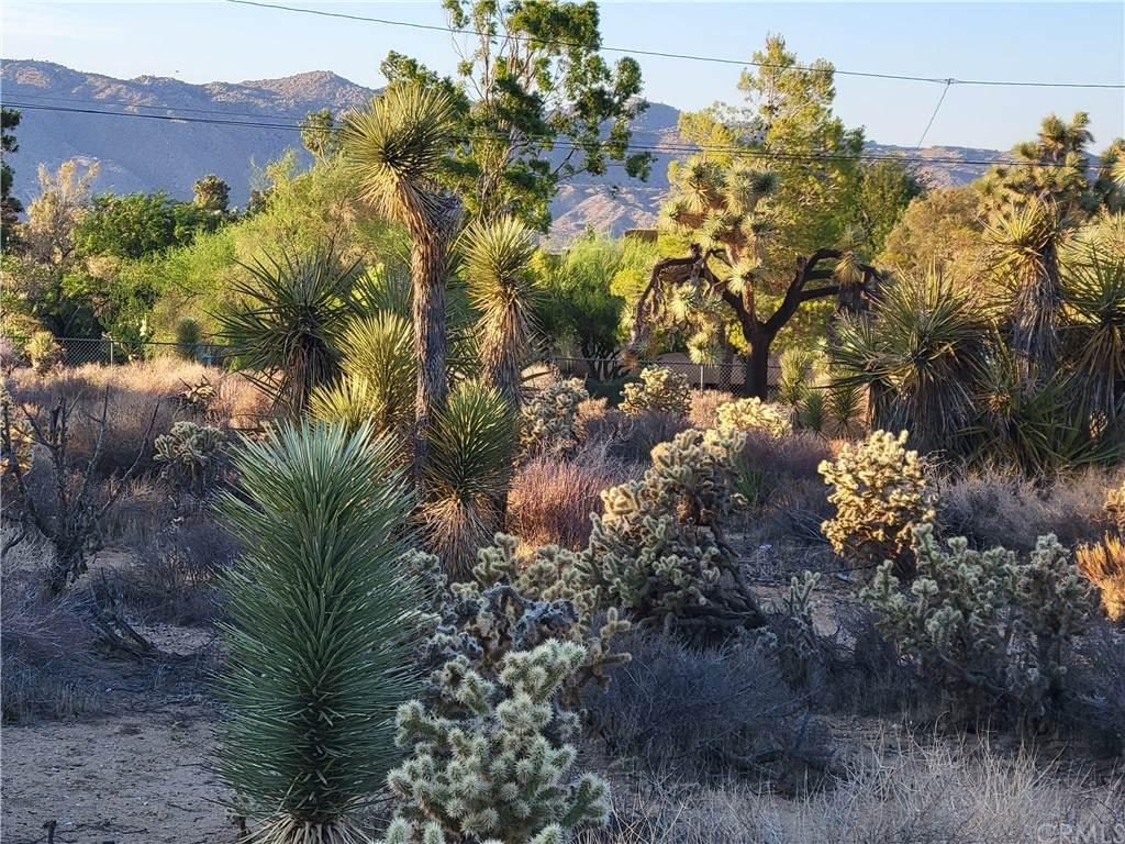 56434 Desert Gold Drive - Photo 1