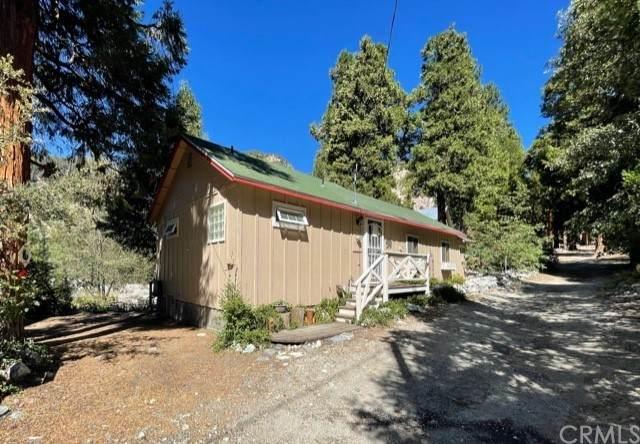 41380 Rainbow Lane, Forest Falls, CA 92339 (#EV21196287) :: Steele Canyon Realty