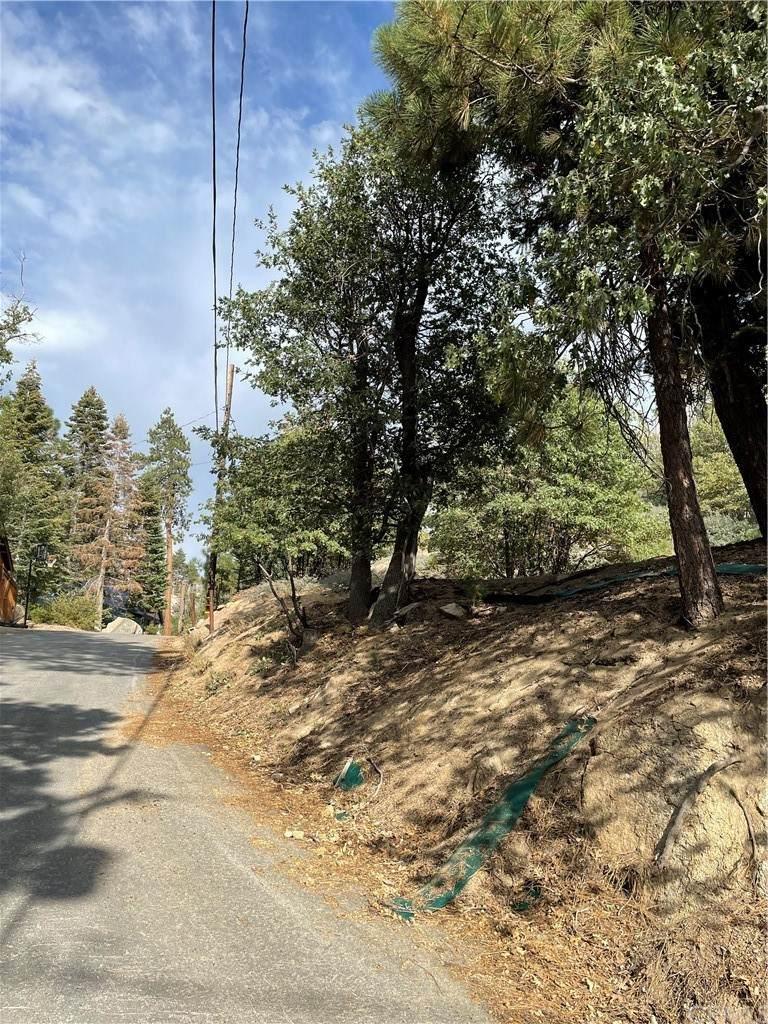 33663 Green Valley Lake Road - Photo 1