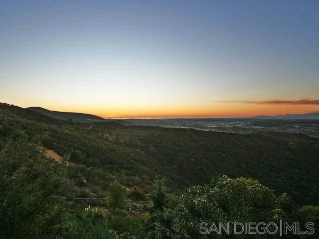 0 Coronado Hills Drive, San Marcos, CA 92078 (#210025878) :: Corcoran Global Living