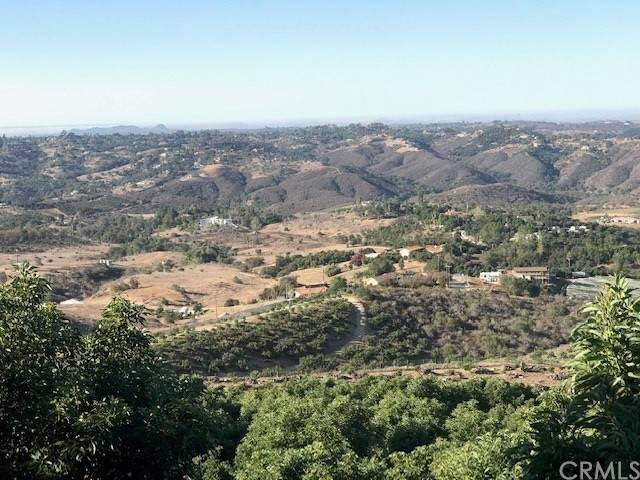 0 Via Panorama, Fallbrook, CA 92028 (#SW21203700) :: The Marelly Group | Sentry Residential