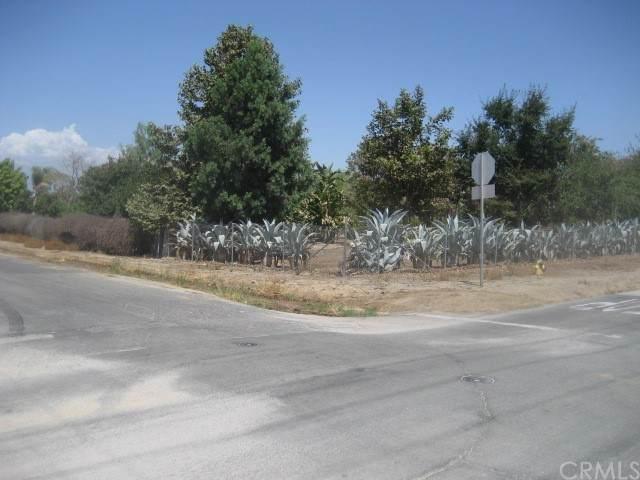 9700 Victoria Avenue, Riverside, CA 92503 (#OC21203781) :: Better Living SoCal