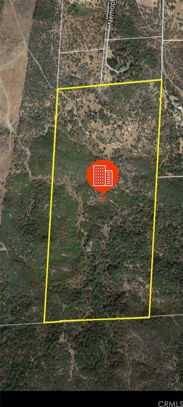 17135 Dill Way, Round Mountain, CA 96069 (#OR21207458) :: Team Tami