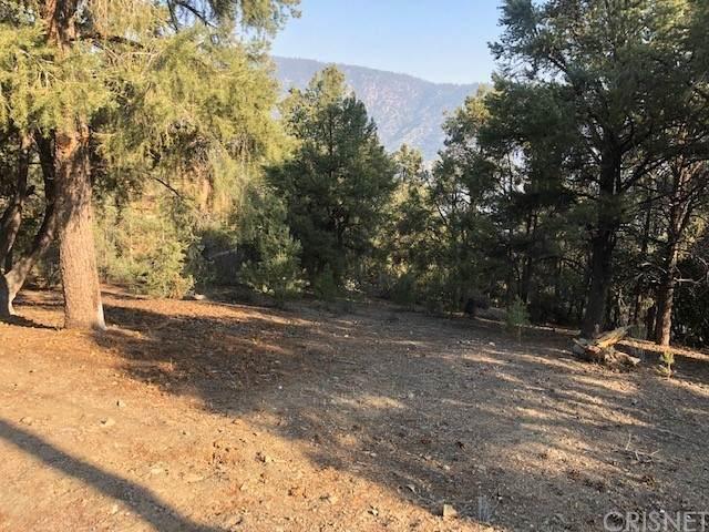 1802 Sand Way, Pine Mountain Club, CA 93222 (#SR21206844) :: Zen Ziejewski and Team
