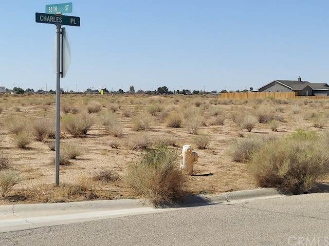 1 Charles Pl, California City, CA 93505 (#DW21208370) :: Team Forss Realty Group