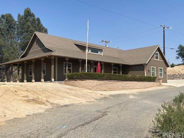 18087 Newview Drive, Lake Hughes, CA 93532 (#SR21209248) :: Team Forss Realty Group