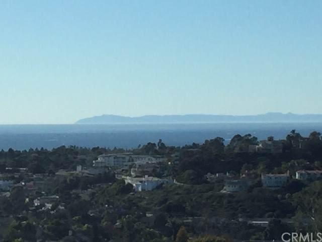 2874 Via Bellota, San Clemente, CA 92673 (#OC21209380) :: Compass