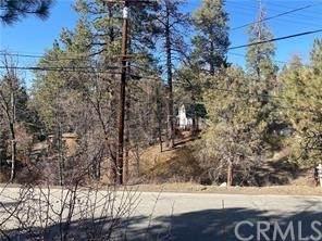 980 Butte, Big Bear, CA 92314 (#PW21210054) :: Corcoran Global Living