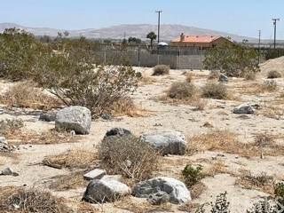 0 Carol, Desert Hot Springs, CA 92240 (MLS #PW21210252) :: Brad Schmett Real Estate Group