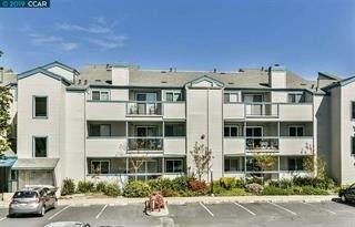 1410 Bel Air Drive #304, Concord, CA 94521 (#ML81865468) :: The Kohler Group