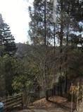 1258 Chula Vista Drive - Photo 32