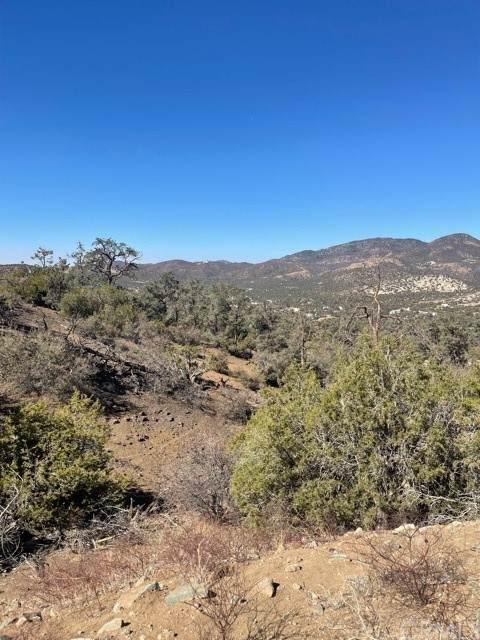 11412 Halter Drive, Tehachapi, CA 93561 (MLS #PW21226766) :: ERA CARLILE Realty Group