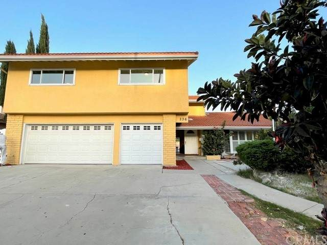 236 Carbonia Avenue, Walnut, CA 91789 (#WS21226392) :: Blake Cory Home Selling Team