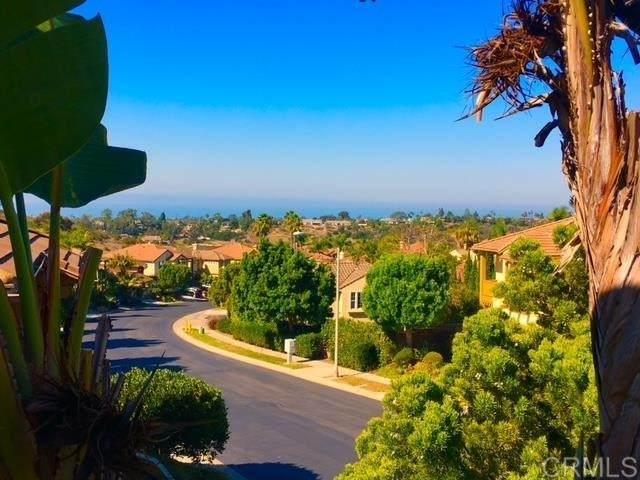 1445 Ranch Road, Encinitas, CA 92024 (#NDP2111775) :: Murphy Real Estate Team