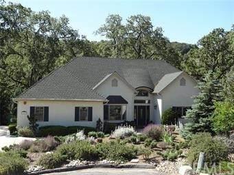 920 Lenosa Lane, Atascadero, CA 93422 (#SC21227783) :: Blake Cory Home Selling Team