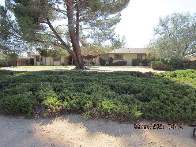 13870 Seminole Road, Apple Valley, CA 92307 (#540343) :: Z REALTY