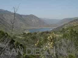 0 Peutz Valley, Alpine, CA 91901 (#210029624) :: Bob Kelly Team