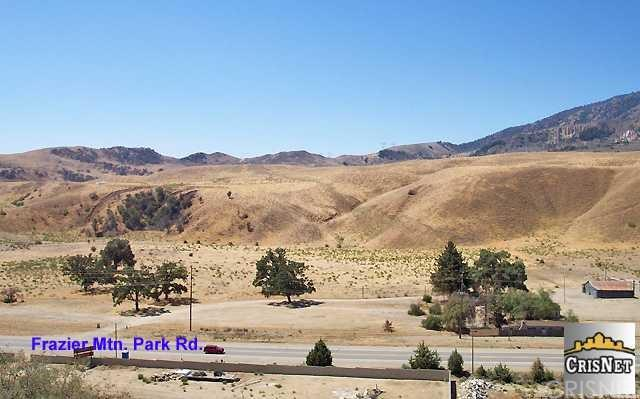 38785 Frazier Mtn. Park Rd. Road, Gorman, CA 93243 (#F1764969) :: Group 46:10 Central Coast