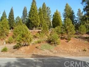 285 Osprey, Lake Almanor West, CA 96020 (#CH16748832) :: Pam Spadafore & Associates
