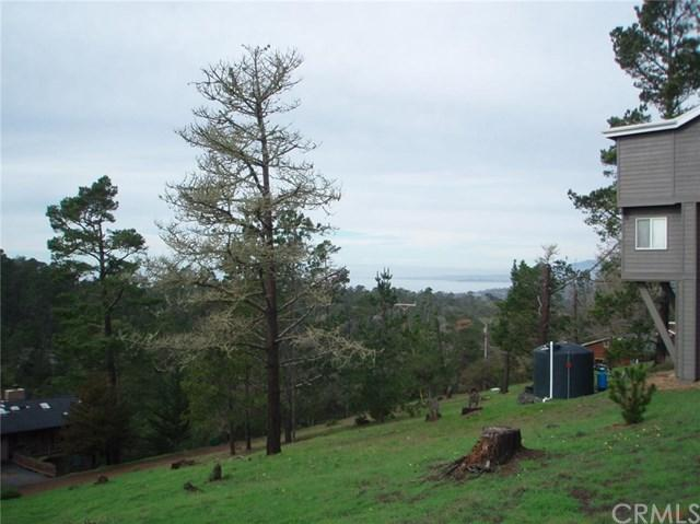 0 Richard Avenue, Cambria, CA 93428 (#SC1074791) :: Sperry Residential Group