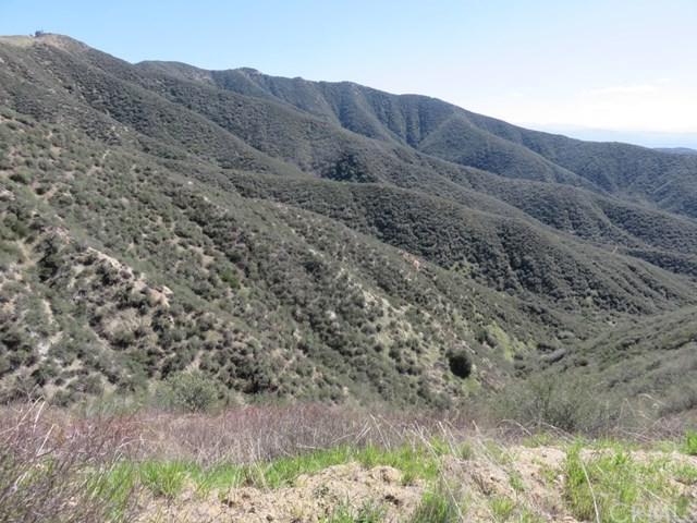 37477 Pisgah Peak Road - Photo 1