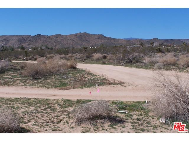 0 Old Woman Springs Road, Yucca Valley, CA 92284 (#15881009PS) :: The Ashley Cooper Team
