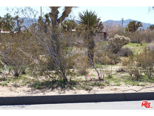 0 Buena Vista Drive, Yucca Valley, CA 92284 (#15882767PS) :: The Ashley Cooper Team