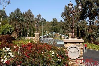 1050 Montecito Ridge, Arroyo Grande, CA 93420 (#SP1076021) :: Pismo Beach Homes Team