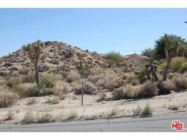 0 Panchita Road, Yucca Valley, CA 92284 (#14771013PS) :: Go Gabby