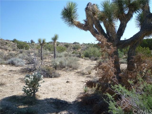 0 Mormon Avenue, Yucca Valley, CA 92284 (#JT17179661) :: RE/MAX Masters