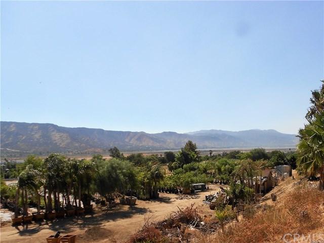 33310 Grape Street, Wildomar, CA 92595 (#SW17187647) :: Allison James Estates and Homes